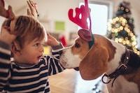 Barn og hund